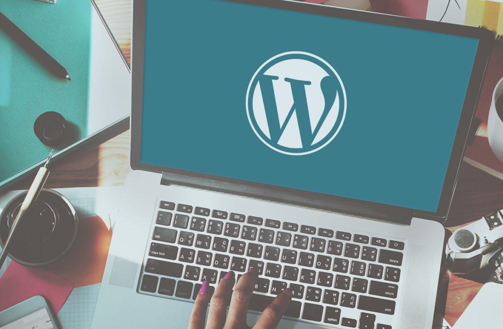 Profesyonel WordPress Geliştirme Hizmeti